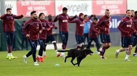 Trabzonspor maça hazır