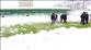 Giresunspor-İstanbulspor maçı ertelendi
