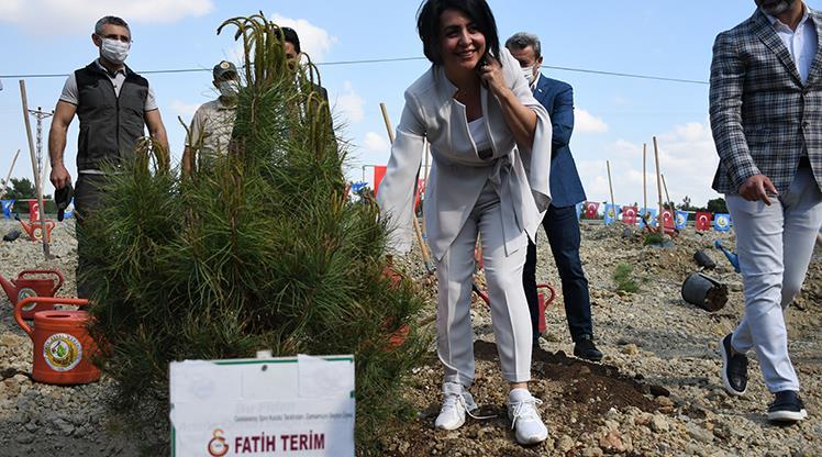 Fatih Terim Hatıra Ormanı'na fidan dikildi